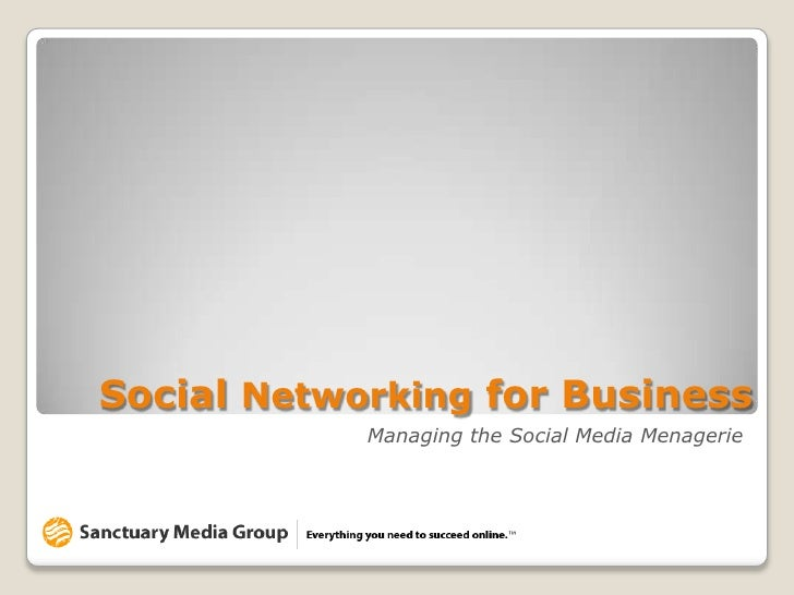 """A Do-It-Yourselfer's Guide to """"Findability""""<br />Social Networking for Business<br />Managing the Social Media Menagerie<b..."""