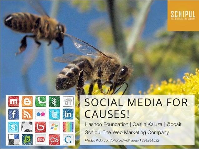SOCIAL MEDIA FOR CAUSES! Hashoo Foundation | Caitlin Kaluza | @qcait Schipul The Web Marketing Company Photo: flickr.com/p...