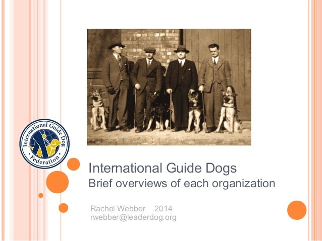 International Guide Dogs Brief overviews of each organization Rachel Webber 2014 rwebber@leaderdog.org