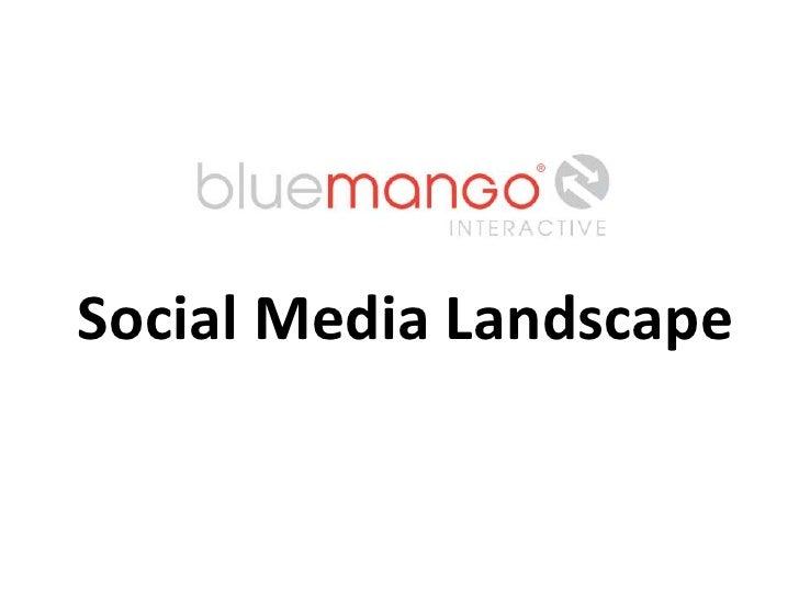 Social Media Landscape<br />