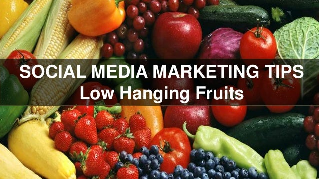 SOCIAL MEDIA MARKETING TIPS Low Hanging Fruits