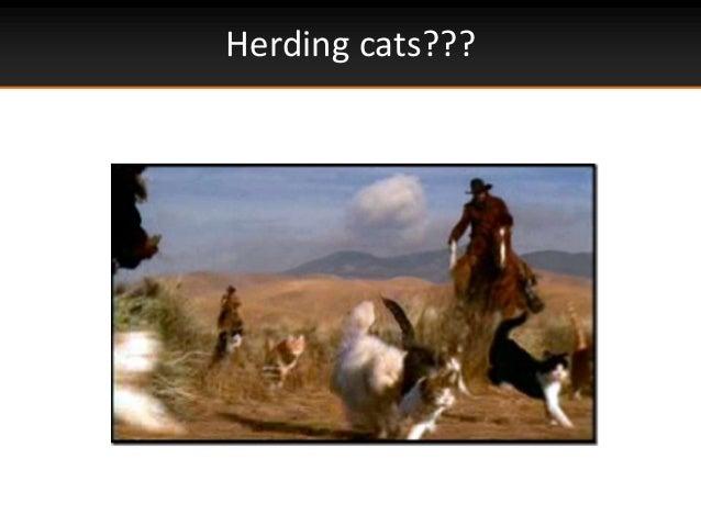 Herding cats???