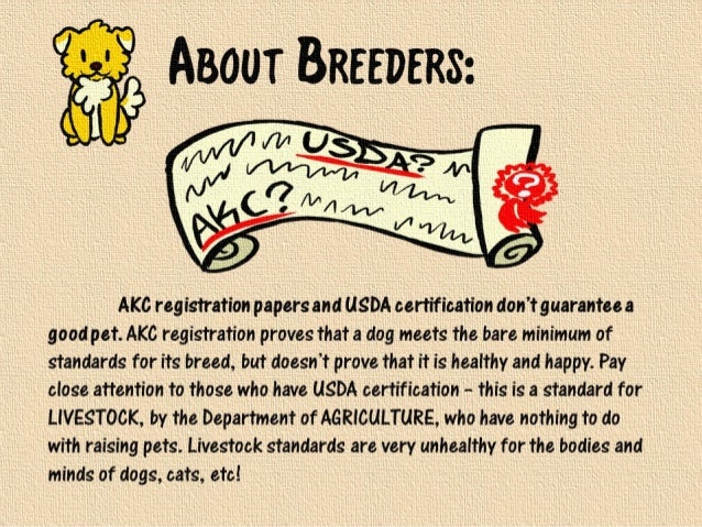 akc papers American kennel club registration | we sell our husky & dobermans pups as pet only however, you can apply for breeding rights (to reputable breeders only.