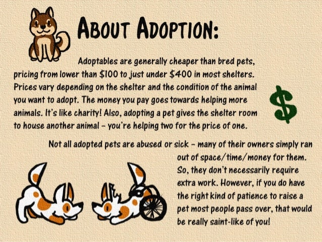 Is Adopting A Dog Cheaper Than Buying