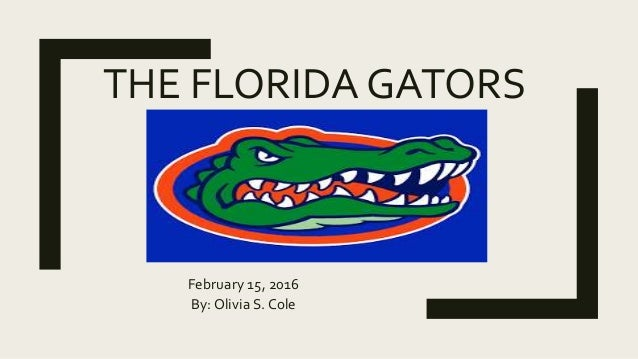 florida gators logo outline. the florida gators february 15 2016 by olivia s cole florida gators logo outline