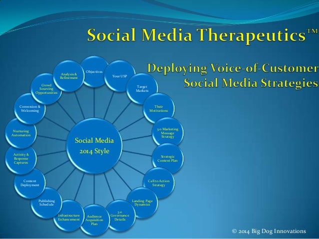 © 2014 Big Dog Innovations Social Media 2014 Style Objectives Your USP Target Markets Their Motivations 3.0 Marketing Mess...