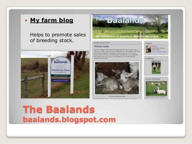    My farm blog    Helps to promote sales    of breeding stock.The Baalandsbaalands.blogspot.com