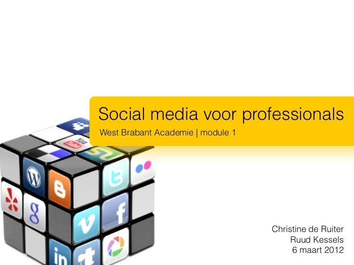 Social media voor professionalsWest Brabant Academie | module 1                                   Christine de Ruiter     ...