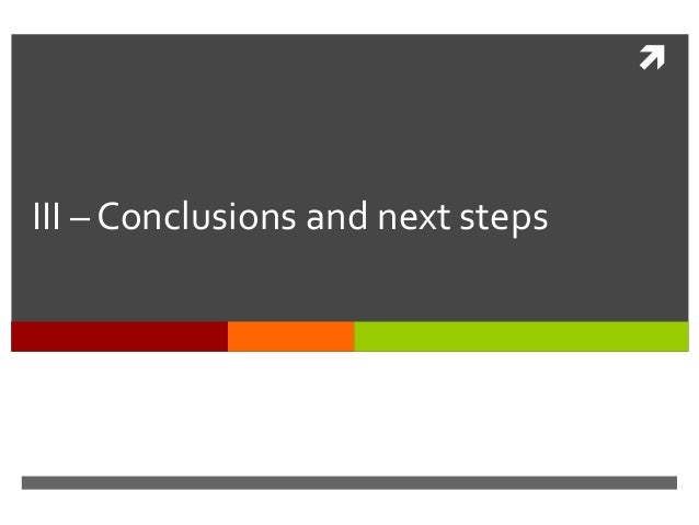  III – Conclusions and next steps