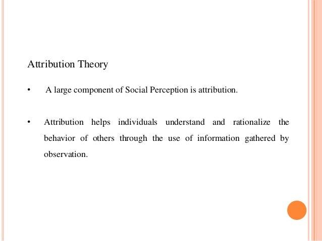 Social perception & attribution