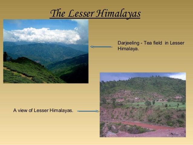 Importance of Shivalik hills •The physical features and the climatic conditions of this region have played an important ro...