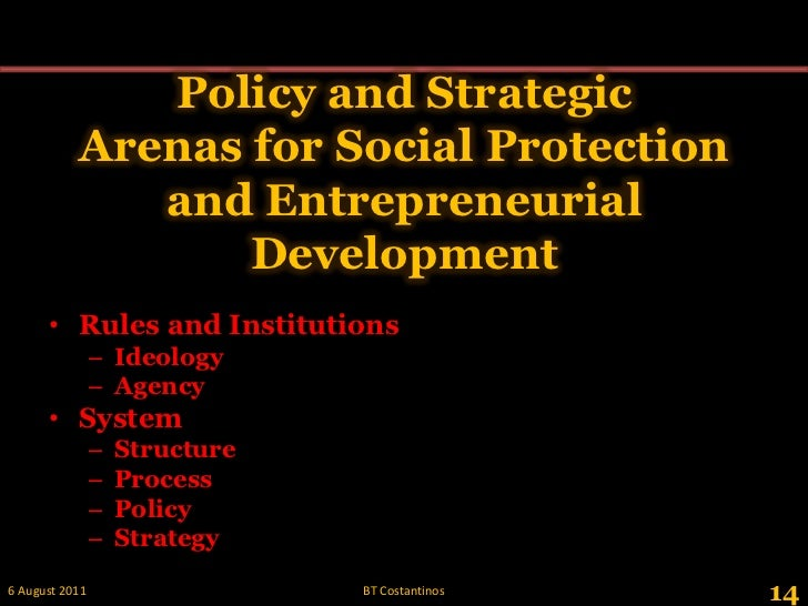 Policy and Strategic Arenas for Social Protection and Entrepreneurial Development<br />14<br />28 May 2011<br />BT Costant...