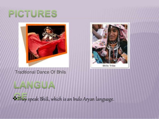 sst - ppt on major types of tribal groups