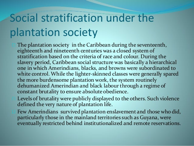 plantation society in the caribbean Models of caribbean society: plantation plural creole introduction the models of caribbean society: plantation plural creole these models are not mutually exclusive the plantation model is primarily socioeconomic while.