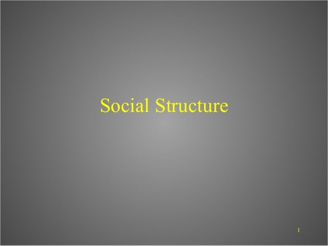 Social Structure                   1
