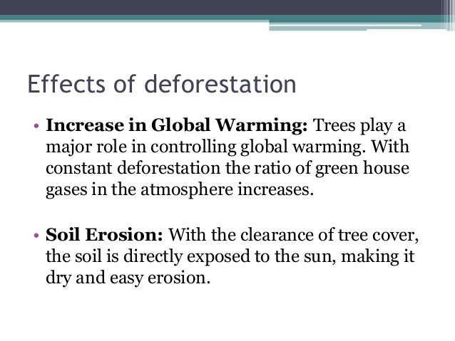 Deforestation: Causes and Effects on Ecological Balance
