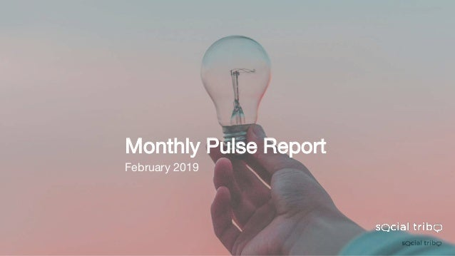 Monthly Pulse Report February 2019