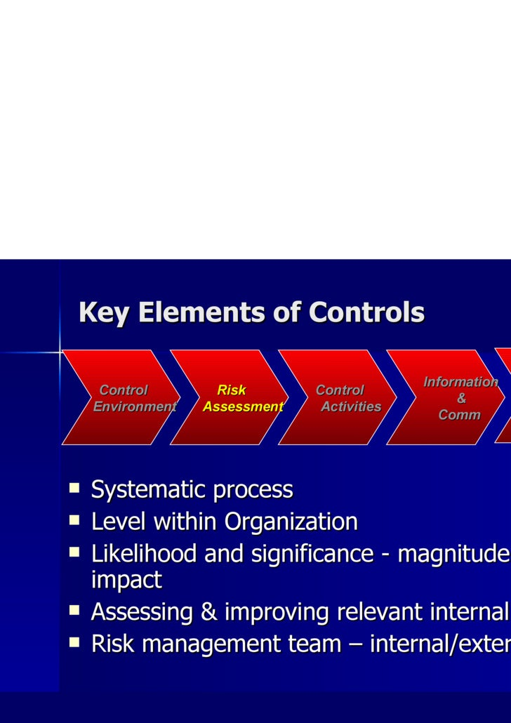 Key Elements of Controls <ul><li>Systematic process </li></ul><ul><li>Level within Organization </li></ul><ul><li>Likeliho...