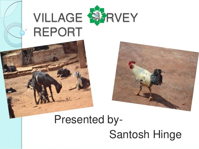 VILLAGE SURVEYREPORT  Presented by-            Santosh Hinge