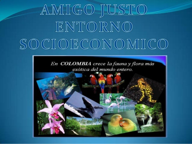 Socioeconomico