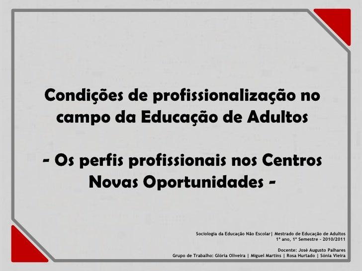 Condições de profissionalização no campo da Educação de Adultos- Os perfis profissionais nos Centros      Novas Oportunida...
