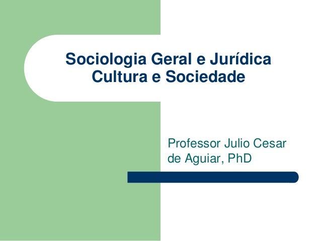 Sociologia Geral e Jurídica Cultura e Sociedade Professor Julio Cesar de Aguiar, PhD