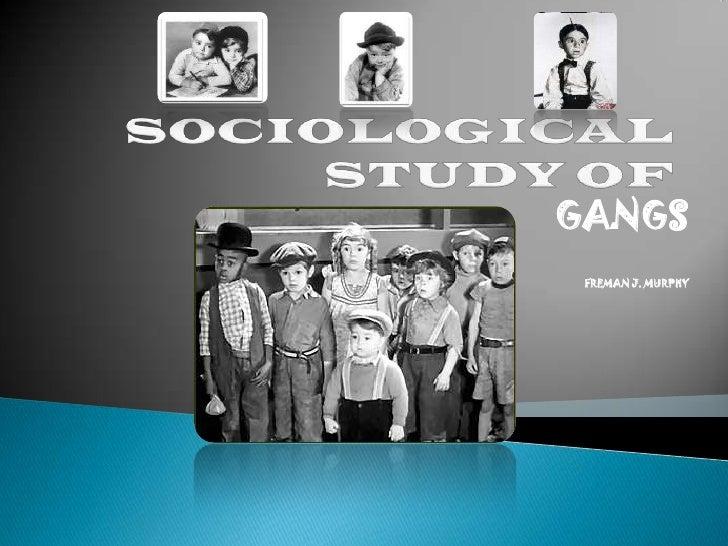 SOCIOLOGICAL STUDY OF<br />GANGS<br />FREMAN J. MURPHY<br />
