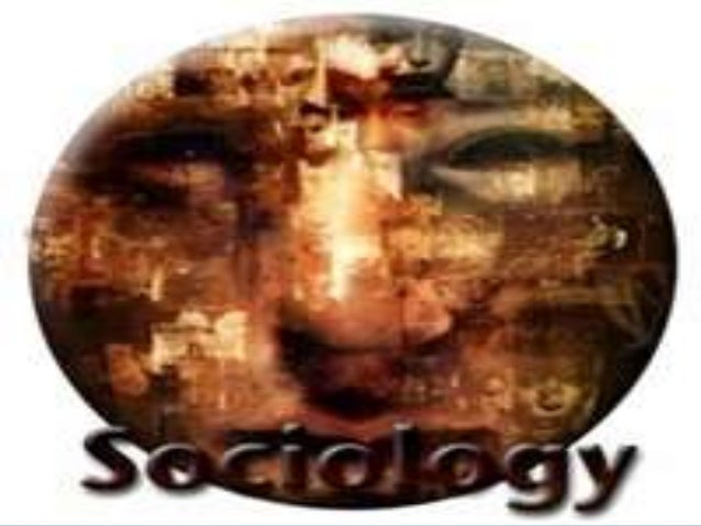 socius definition