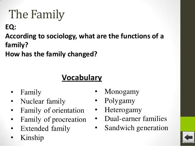 social institution family essay