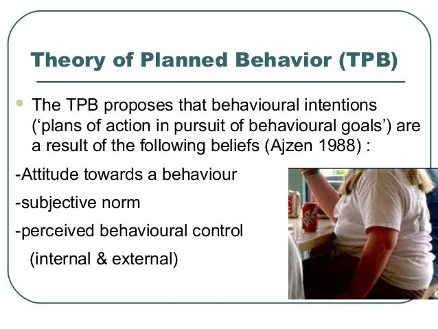 theory of planned behaviour tpb psychology essay Action (tra fishbein & ajzen, 1975), the theory of planned behavior (tpb ajzen ,  the psychological variables measured for the study were environmental.