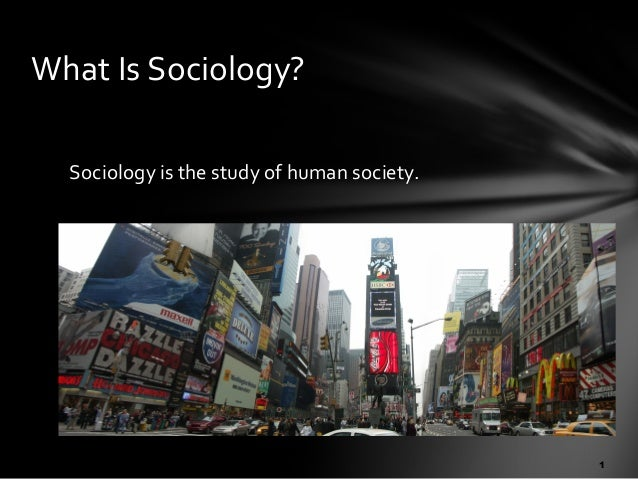 What Is Sociology? Sociology is the study of human society.  1