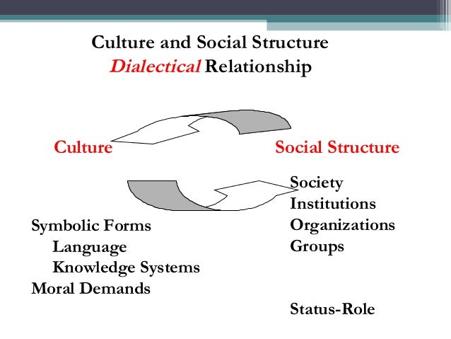 sociology culture and social structure Wilson perceives social structure and culture as key causes of poverty  orlando patterson, the john cowles professor of sociology, spoke about the need for .