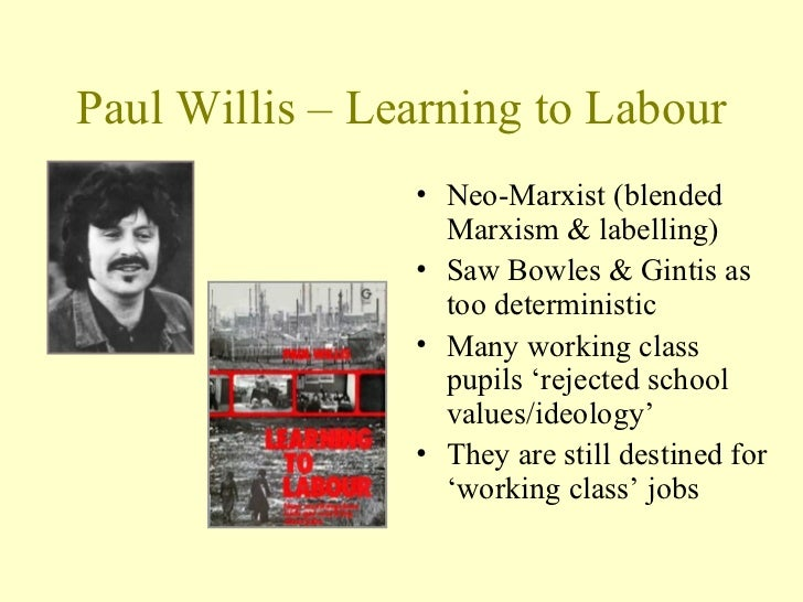 paul willis learning to labour Paul willis: learning to labour series: classic collection in this programme  willis talks about how his interest in culture and counter culture led him into.