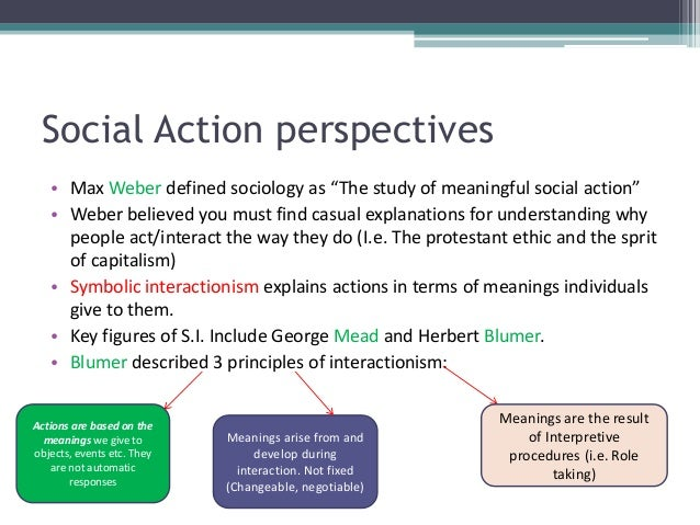 max weber social action theory
