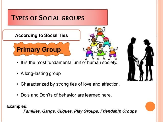 primary sociology