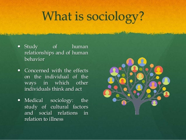 Describe the factors to consider when promoting effective communication Essay