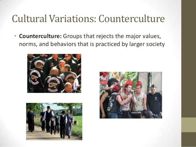 Counter Culture Values Essay - image 9