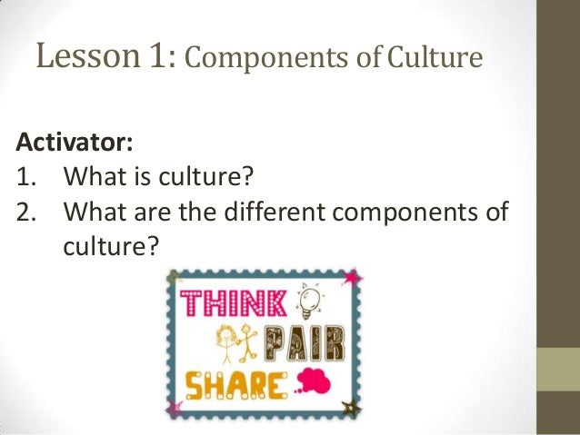components of culture essay