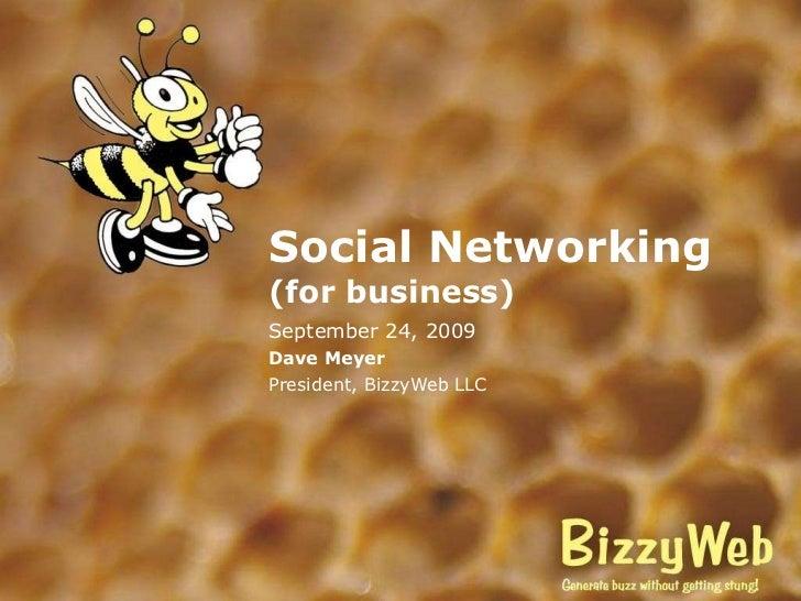 Social Networking (for business) September 24, 2009 Dave Meyer President, BizzyWeb LLC