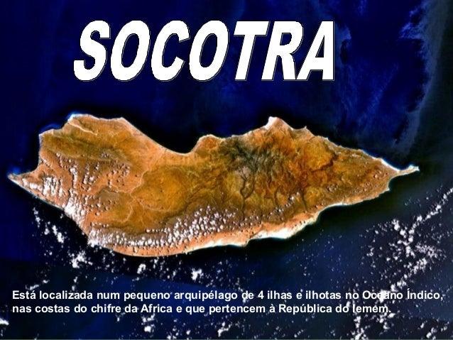 SocotraSocotra Está localizada num pequeno arquipélago de 4 ilhas e ilhotas no Oceano Índico, nas costas do chifre da Afri...