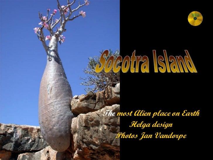 The  most Alien place on Earth Helga design Photos Jan Vandorpe Socotra Island