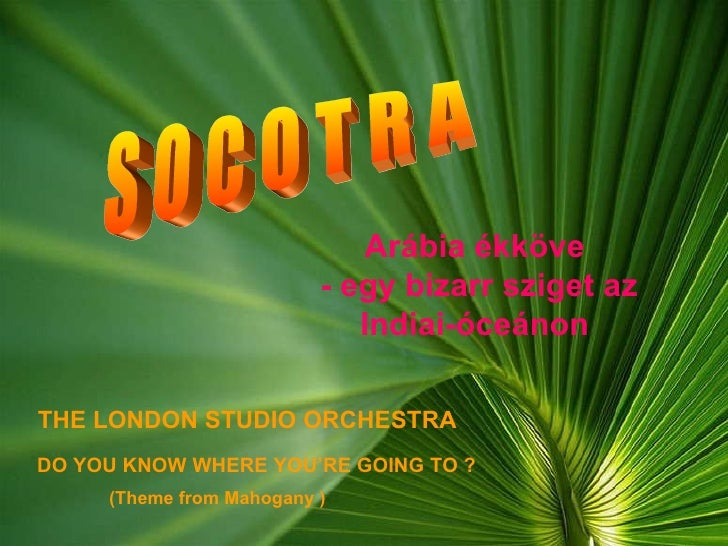 S O C O T R A DO YOU KNOW WHERE YOU'RE GOING TO ? THE LONDON STUDIO ORCHESTRA (Theme from Mahogany ) Arábia ékköve  - egy ...