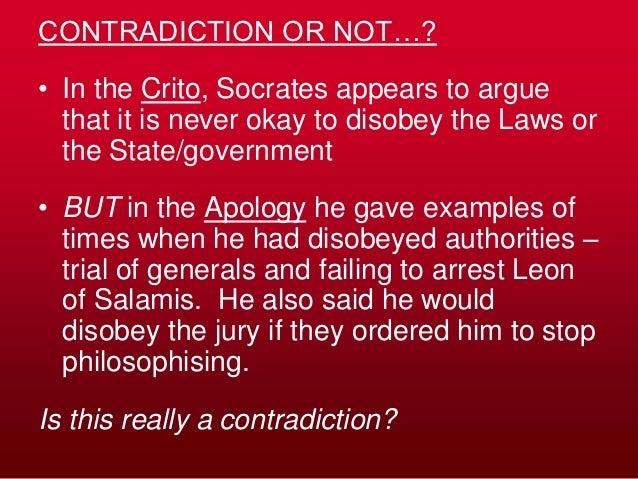 apology and crito contradiction