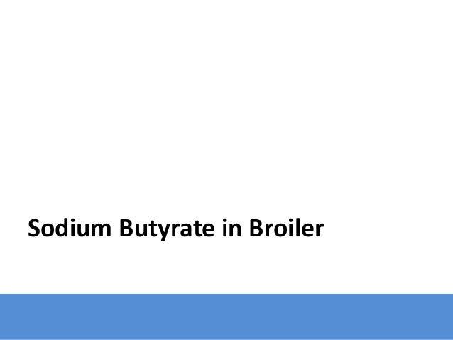 Sodium Butyrate in Broiler