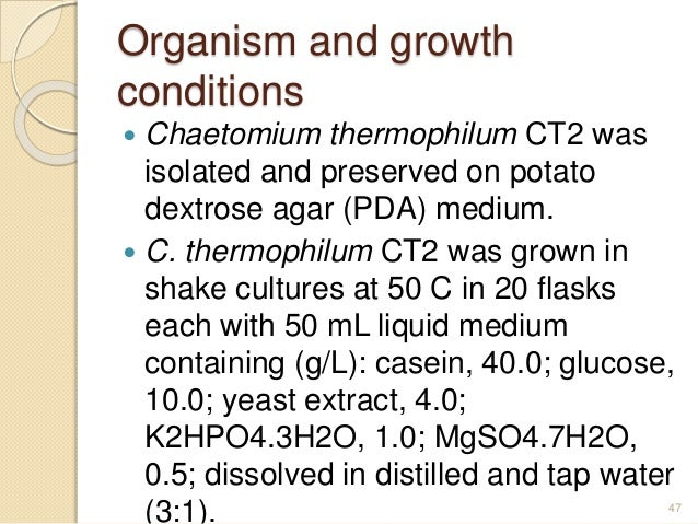 isolation and identification of thermophilic fungi essay Free fungi papers, essays, and research papers  isolation and identification of  thermophilic fungi - we isolated thirty thermophilic fungi with ability to grow at.