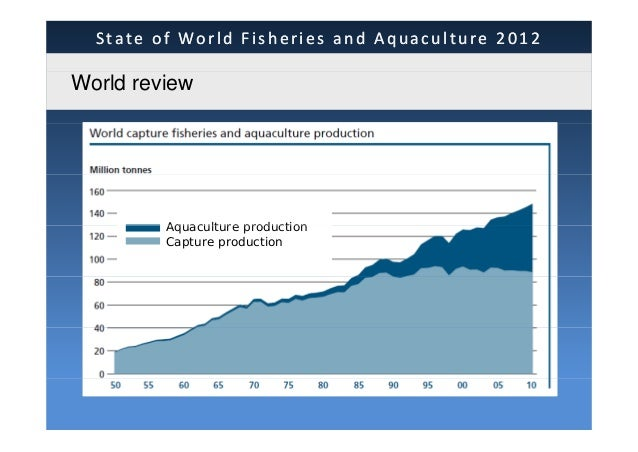 Sofia2012 cofi presentation state of world fisheries and aquaculture 2012 world review global production 1485 million tonnes total total sciox Gallery
