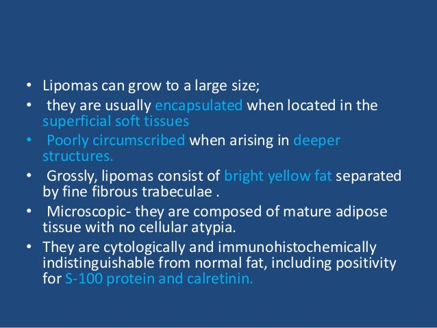 • 4- Myolipoma. This tumor is characterized by an admixture in variable proportions of mature adipose tissue and bundles o...