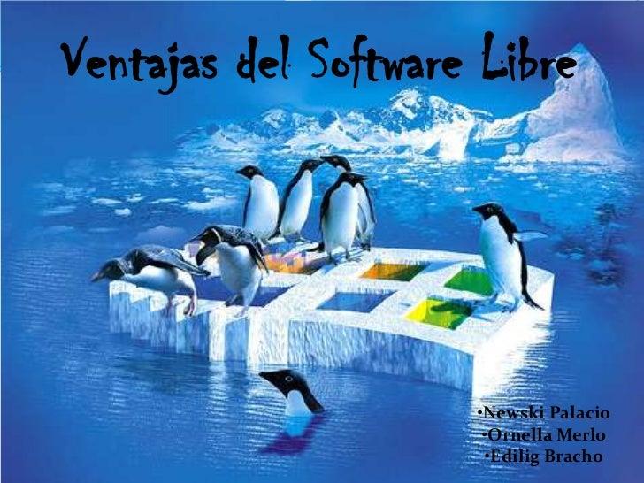 Ventajas del Software Libre<br /><ul><li>Newski Palacio