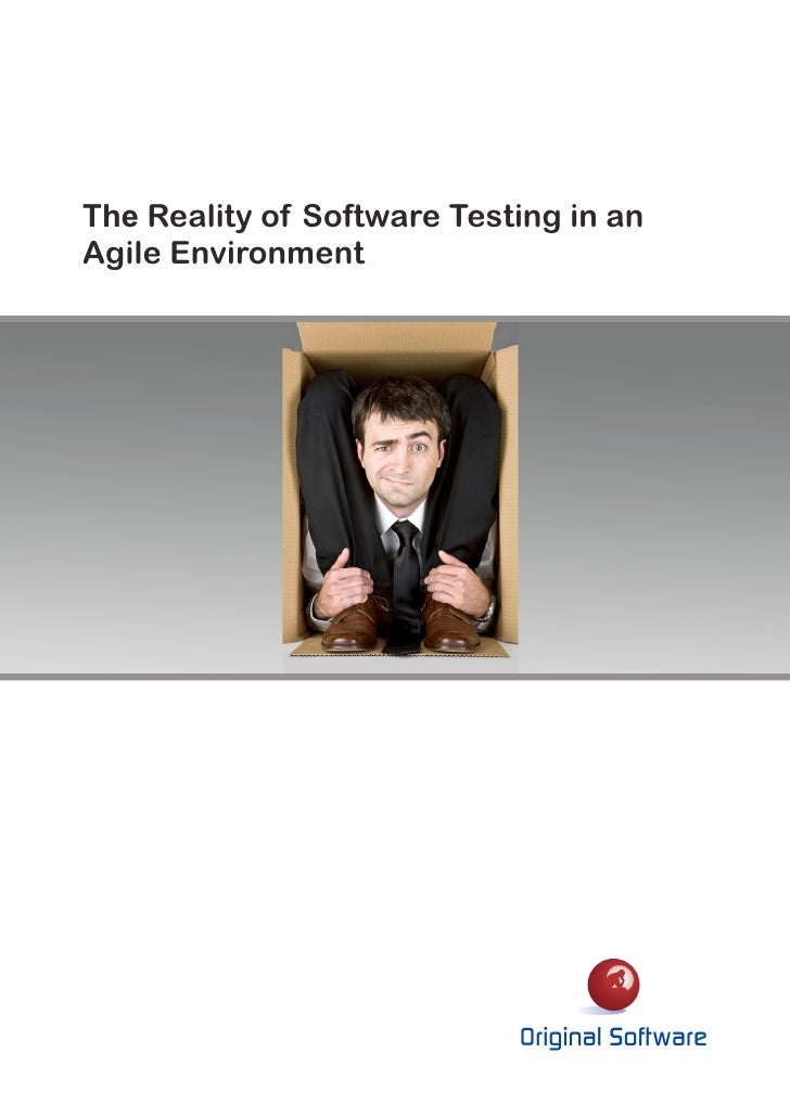 The Reality of Software Testing in anAgile Environment