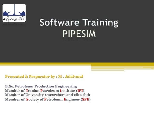 Software training pipesim